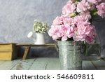 pink carnation flowers in zinc...   Shutterstock . vector #546609811