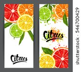 banners with citrus fruits... | Shutterstock .eps vector #546700429