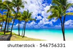 tropical scenery. beautiful... | Shutterstock . vector #546756331