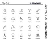 human body flat icon set.... | Shutterstock .eps vector #546763429