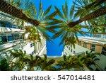 fisheye view of beautiful miami ... | Shutterstock . vector #547014481