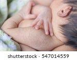 closeup hands of the baby is...   Shutterstock . vector #547014559