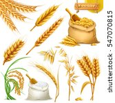 wheat  barley  oat and rice.... | Shutterstock .eps vector #547070815