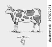 cow farm engraved  hand drawn...   Shutterstock .eps vector #547073071