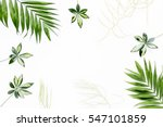 green palm leaf branches on... | Shutterstock . vector #547101859