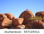 Northern Territory  Australia ...
