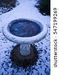 Frozen Garden Bird Bath