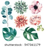 big flower collection... | Shutterstock . vector #547361179