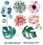 big flower collection... | Shutterstock . vector #547361179