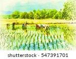 Digital Painting Farmers...