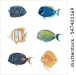 vector set of tropical fish.... | Shutterstock .eps vector #547401169