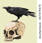 raven sitting on human skull    ... | Shutterstock .eps vector #547479475