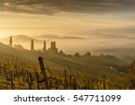 Landscape With Vineyards At...