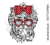 cute dog with glasses heart. st.... | Shutterstock .eps vector #547714984