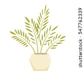 cycas in pot. interior home and ...   Shutterstock . vector #547762339