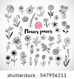 set of doodle sketch flowers on ... | Shutterstock .eps vector #547956211