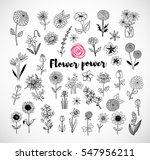 set of doodle sketch flowers on ... | Shutterstock .eps vector #547956211
