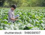happy farmers using digital... | Shutterstock . vector #548038507