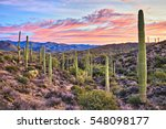 Sunrise In Sonoran Desert Near...