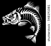 bass fish skeleton isolated on... | Shutterstock .eps vector #548191081