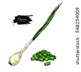 Green Spring Onion Set. Hand...