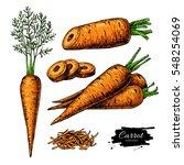 carrot hand drawn vector... | Shutterstock .eps vector #548254069