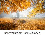autumn in german mountains and... | Shutterstock . vector #548255275