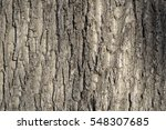 Maple Bark Texture Photo Brown...