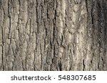 Maple Bark Texture Photo Brown...