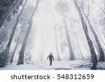 People In Foggy Forest