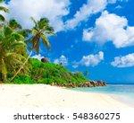 summertime palms tranquility  | Shutterstock . vector #548360275