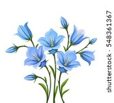 vector blue bluebell flowers... | Shutterstock .eps vector #548361367