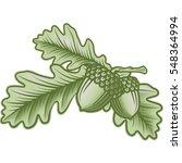 Vector Oak Leaves And Acorns...