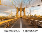 Stock photo new york skyline in the brooklyn bridge 548405539
