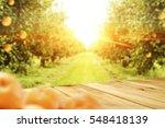 wooden table in garden with... | Shutterstock . vector #548418139