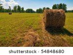 Twisted hay in the meadow under the bright sky with small amount of clouds - stock photo