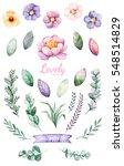 handpainted watercolor flowers... | Shutterstock . vector #548514829