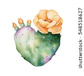 watercolor handpainted cactus... | Shutterstock . vector #548518627
