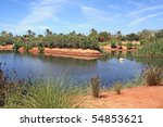 Lake and palmtrees in tropical park in the south of Spain. - stock photo