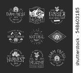 set of badge for farmers market | Shutterstock .eps vector #548603185
