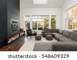 modern living room  | Shutterstock . vector #548609329