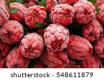 Bunch Of Red Artificial Protea...