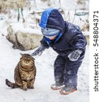 A Small Child Petting A Cat In...