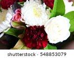 Beautiful Chrysanthemum And...