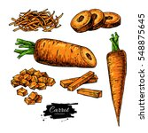 carrot hand drawn vector... | Shutterstock .eps vector #548875645
