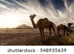 white canyon in egypt | Shutterstock . vector #548935639