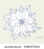 poinsettia isolated  christmas...   Shutterstock .eps vector #548937034