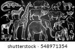 african animals and birds set.... | Shutterstock .eps vector #548971354