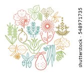 set medical color herbs in... | Shutterstock .eps vector #548971735