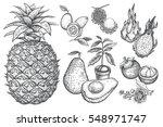 exotic fruit kumquat  pineapple ... | Shutterstock .eps vector #548971747